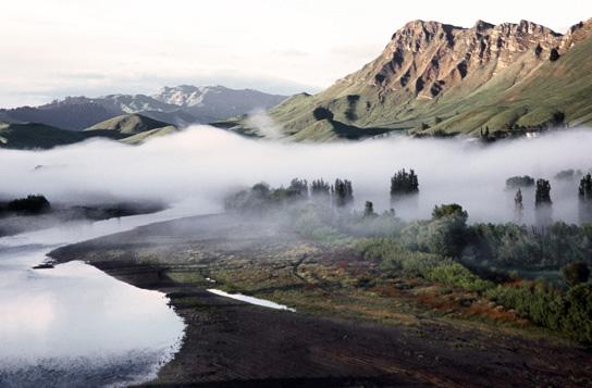 wine-beer-store-phoenix-july-wine-club-craggy-fog